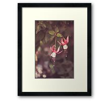 Dream Flower 34 Framed Print
