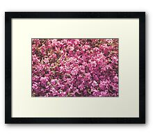 Dream Flower 35 Framed Print