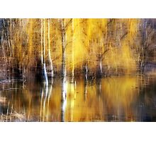 Golden Reflections Photographic Print