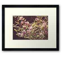 Dream Flower 36 Framed Print