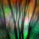 Abstract Winter Trees by Brian Gaynor