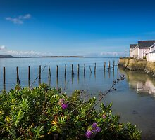 Aberdovey Waterfront Cottages by mlphoto