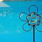 Blue Flower Reflection by Susan Zohn