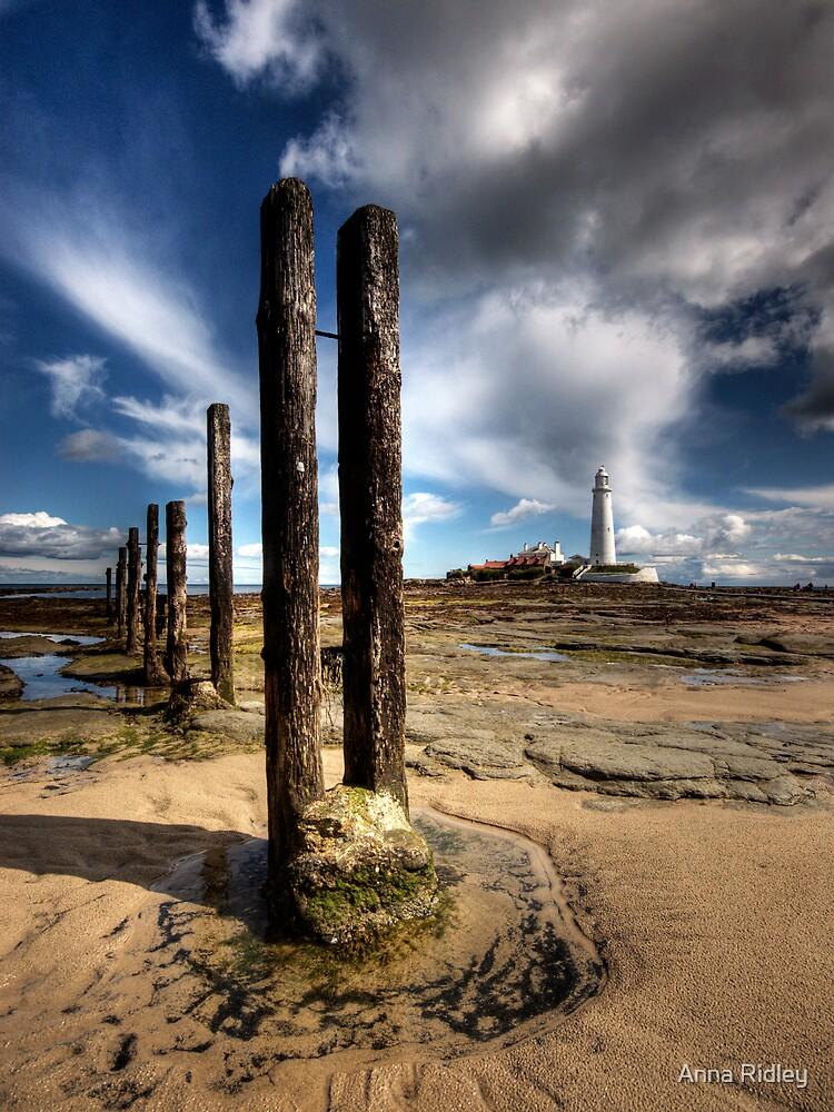 Bait Island by Anna Ridley