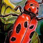 Milkweed Beetle by evon ski