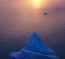 Sunset Bergs, Antarctica by Andy Townsend