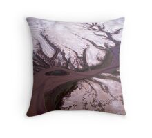 Derby Mudflats Throw Pillow