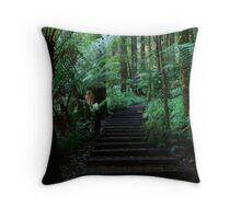 Triplet Falls Stairs Throw Pillow