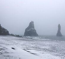 Beach in a Snowstorm by Alyssa Dionne