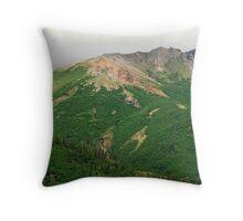 Mountains Denali AK Throw Pillow