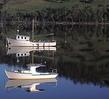 Port Huon mirror by mooksool