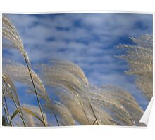 Swaying in the Wind Poster