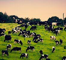 A Little English Countryside by MichelleOkane