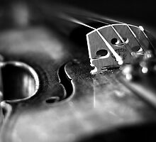 Musical Depth of Field by johnwheat