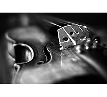 Musical Depth of Field Photographic Print