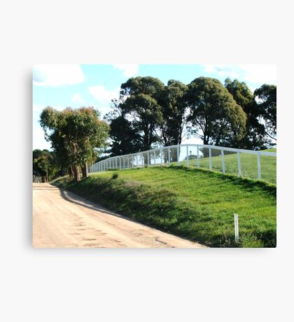 Over The White Fence Canvas Print