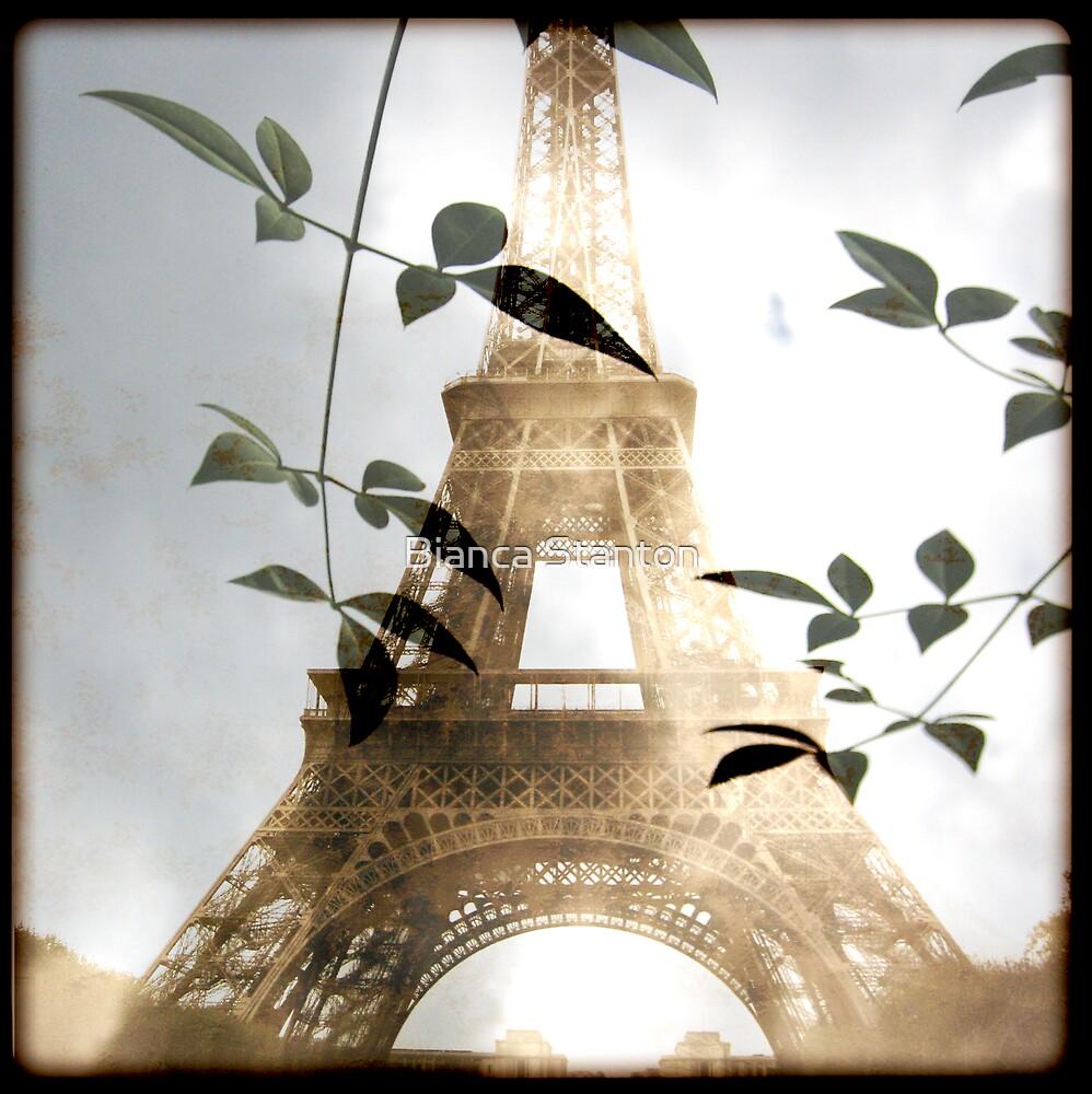 PARIS 1 by Bianca Stanton