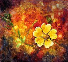 Spring Color by RickMosher