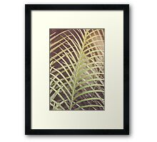 Dream Flower 44 Framed Print