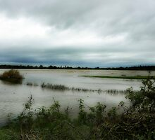 Tewkesbury Floods by dspics