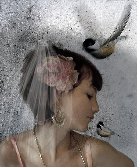In the Stillness of Dawn by Voila and Black Ribbon