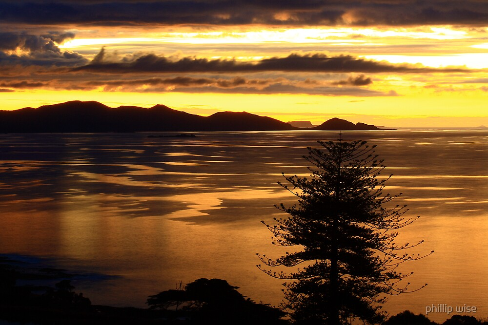 Rocky Cape National park at sunset , Tasmania , Australia by phillip wise