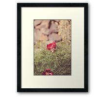 Dream Flower 45 Framed Print
