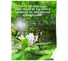 Love is Therapy Poster