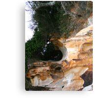 Natural sculpture 1 Canvas Print