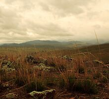 Canberra Highlands by Adam Wightman