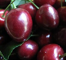 Life is Just a Bowl of Cherries by Pamela Jayne Smith