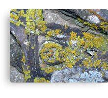 Natural sculpture 10 Canvas Print