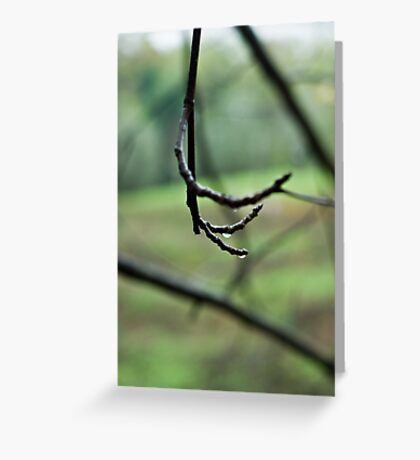 Lines on green Greeting Card