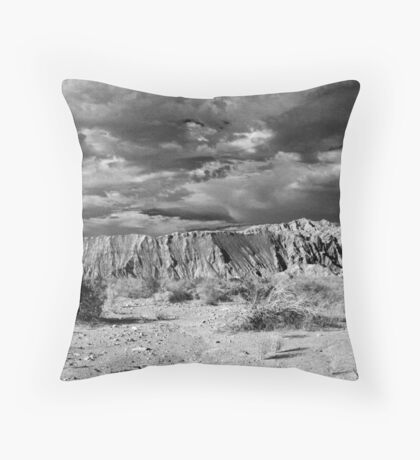 Side of the Road Throw Pillow