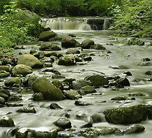 Hewitt Falls by Stephen Vecchiotti