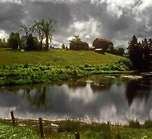 Nova Scotia pond by milton ginos