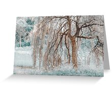 Secret Life of the Willow Tree. Nature in Alien Skin  Greeting Card