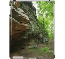 Devil's Standtable Nature Trail #1 iPad Case/Skin