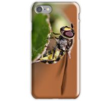 Close up of yellow and black insect on leaf iPhone Case/Skin