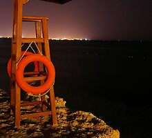 Nightguard by Robin Wiggs