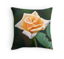 Orange & Cream Rose Throw Pillow