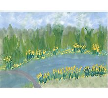 Narcissus along the Banks Photographic Print