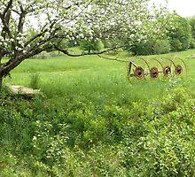 Spring Farm Scene by mooselandtours