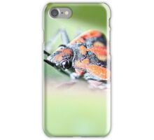Shield Bug - image 2 iPhone Case/Skin