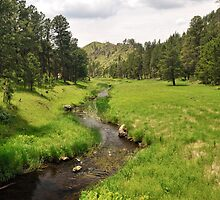 French Creek - Custer State Park by Mark Heller