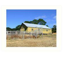 The shearing shed Art Print
