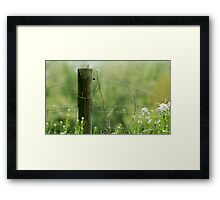 The Fence Post Framed Print