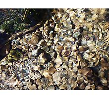 over the rocks and stones Photographic Print