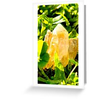 Raw quartz Greeting Card