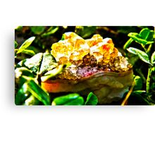 Citrine amethyst Cluster Cleansing  Canvas Print